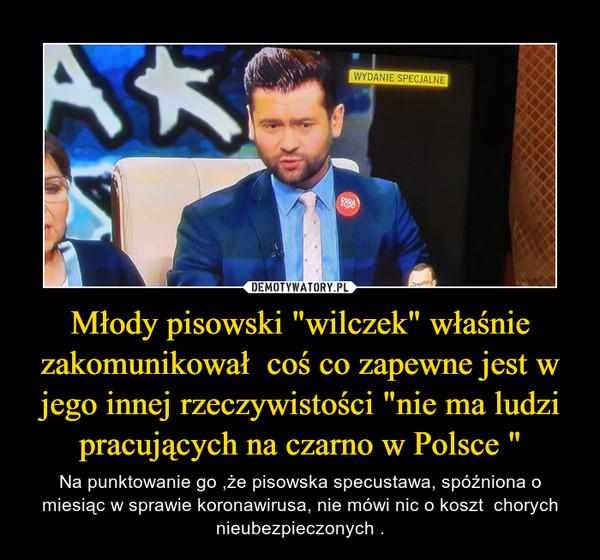 """Młody pisowski """"wilczek"""" właśnie zakomunikował  coś co zapewne jest w jego innej rzeczywistości """"nie ma ludzi pracujących na czarno w Polsce """" – Na punktowanie go ,że pisowska specustawa, spóźniona o miesiąc w sprawie koronawirusa, nie mówi nic o koszt  chorych nieubezpieczonych ."""