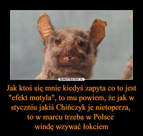 """Jak ktoś się mnie kiedyś zapyta co to jest """"efekt motyla"""", to mu powiem, że jak w styczniu jakiś Chińczyk je nietoperza,  to w marcu trzeba w Polsce  windę wzywać łokciem"""