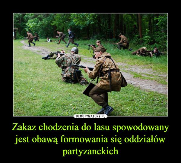 Zakaz chodzenia do lasu spowodowany jest obawą formowania się oddziałów partyzanckich –