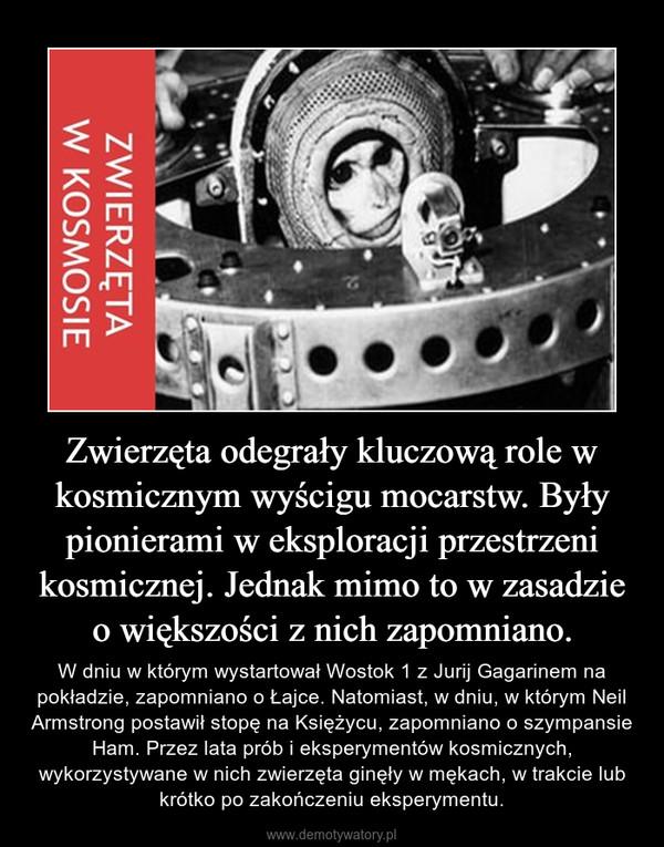Zwierzęta odegrały kluczową role w kosmicznym wyścigu mocarstw. Były pionierami w eksploracji przestrzeni kosmicznej. Jednak mimo to w zasadzie o większości z nich zapomniano. – W dniu w którym wystartował Wostok 1 z Jurij Gagarinem na pokładzie, zapomniano o Łajce. Natomiast, w dniu, w którym Neil Armstrong postawił stopę na Księżycu, zapomniano o szympansie Ham. Przez lata prób i eksperymentów kosmicznych, wykorzystywane w nich zwierzęta ginęły w mękach, w trakcie lub krótko po zakończeniu eksperymentu.