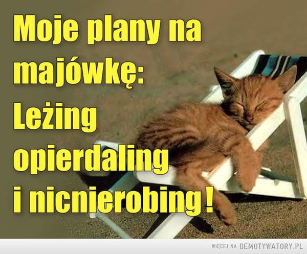 Moje plany –  Moje plany na majówkę:Lezing opierdalingi nicnierobing!