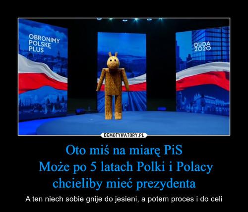 Oto miś na miarę PiS  Może po 5 latach Polki i Polacy chcieliby mieć prezydenta