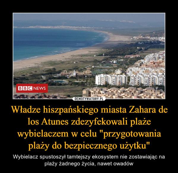 """Władze hiszpańskiego miasta Zahara de los Atunes zdezyfekowali plaże wybielaczem w celu """"przygotowania plaży do bezpiecznego użytku"""" – Wybielacz spustoszył tamtejszy ekosystem nie zostawiając na plaży żadnego życia, nawet owadów"""