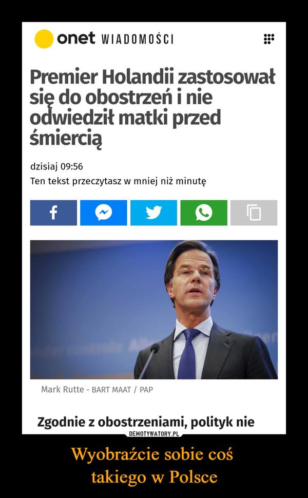 Wyobraźcie sobie coś takiego w Polsce –