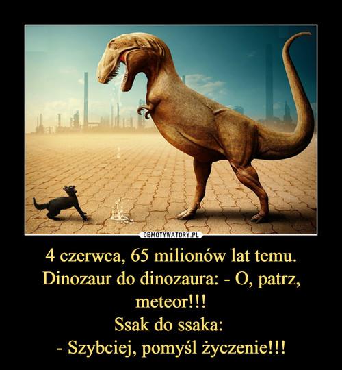 4 czerwca, 65 milionów lat temu. Dinozaur do dinozaura: - O, patrz, meteor!!! Ssak do ssaka:  - Szybciej, pomyśl życzenie!!!