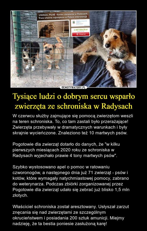 """Tysiące ludzi o dobrym sercu wsparło zwierzęta ze schroniska w Radysach – W czerwcu służby zajmujące się pomocą zwierzętom weszli na teren schroniska. To, co tam zastali było przerażające! Zwierzęta przebywały w dramatycznych warunkach i były skrajnie wycieńczone. Znaleziono też 10 martwych psów. Pogotowie dla zwierząt dotarło do danych, że """"w kilku pierwszych miesiącach 2020 roku ze schroniska w Radysach wyjechało prawie 4 tony martwych psów"""". Szybko wystosowano apel o pomoc w ratowaniu czworonogów, a następnego dnia już 71 zwierząt - psów i kotów, które wymagały natychmiastowej pomocy, zabrano do weterynarza. Podczas zbiórki zorganizowanej przez Pogotowie dla zwierząt udało się zebrać już blisko 1,5 mln złotych.Właściciel schroniska został aresztowany. Usłyszał zarzut znęcania się nad zwierzętami ze szczególnym okrucieństwem i posiadania 200 sztuk amunicji. Miejmy nadzieję, że ta bestia poniesie zasłużoną karę!"""