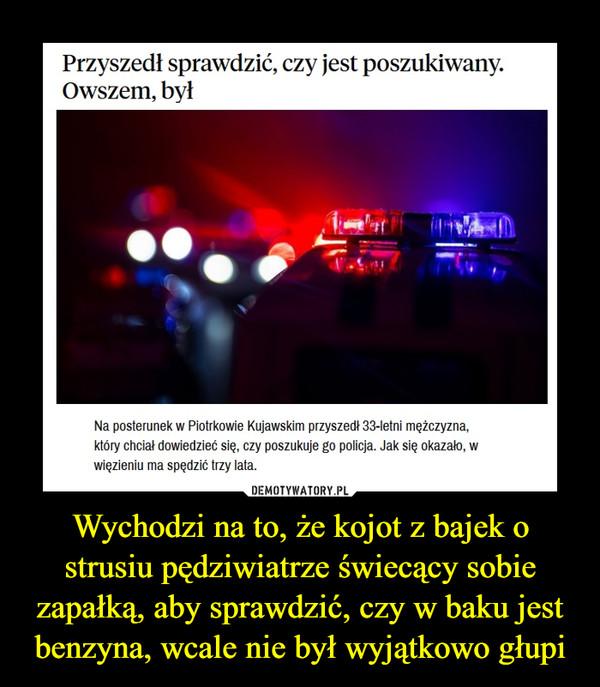 Wychodzi na to, że kojot z bajek o strusiu pędziwiatrze świecący sobie zapałką, aby sprawdzić, czy w baku jest benzyna, wcale nie był wyjątkowo głupi –  Przyszedł sprawdzić, czy jest poszukiwany. Owszem, był Na posterunek w Piotrkowie Kujawskim przyszedł 33-letni mężczyzna, który chciał dowiedzieć się, czy poszukuje go policja. Jak się okazało, w więzieniu ma spędzić trzy lata.