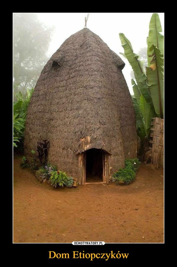 Dom Etiopczyków –