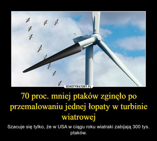 70 proc. mniej ptaków zginęło po przemalowaniu jednej łopaty w turbinie wiatrowej