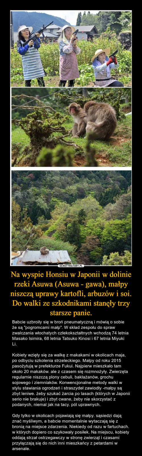 Na wyspie Honsiu w Japonii w dolinie rzeki Asuwa (Asuwa - gawa), małpy niszczą uprawy kartofli, arbuzów i soi. Do walki ze szkodnikami stanęły trzy starsze panie.