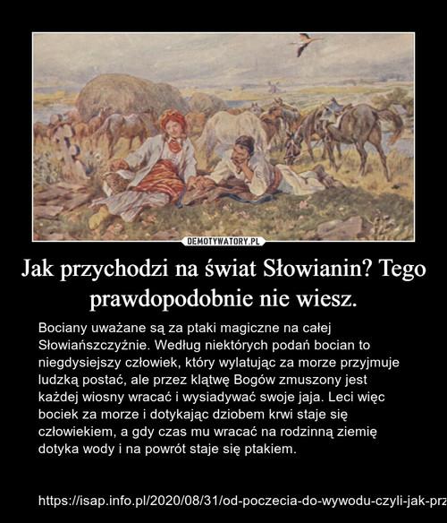 Jak przychodzi na świat Słowianin? Tego prawdopodobnie nie wiesz.