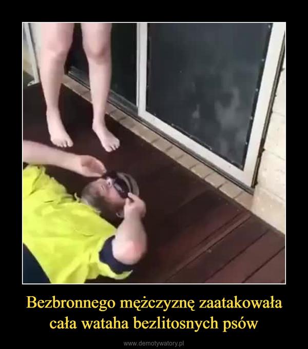 Bezbronnego mężczyznę zaatakowała cała wataha bezlitosnych psów –