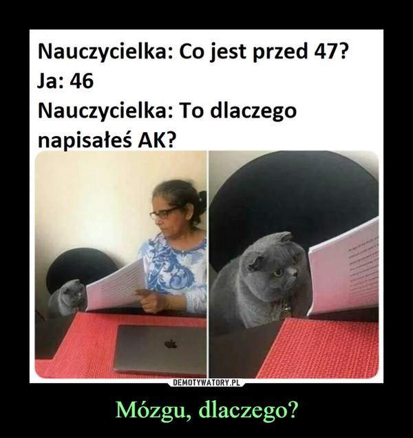 Mózgu, dlaczego? –  Nauczycielka: Co jest przed 47?Ja: 46Nauczycielka: To dlaczegonapisałeś AK?__