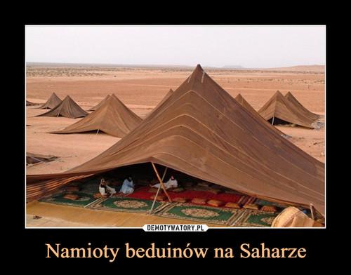 Namioty beduinów na Saharze