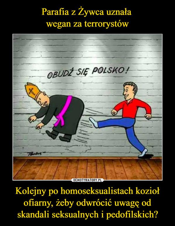 Kolejny po homoseksualistach kozioł ofiarny, żeby odwrócić uwagę od skandali seksualnych i pedofilskich? –
