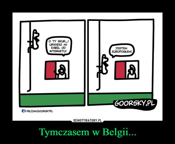 Tymczasem w Belgii... –
