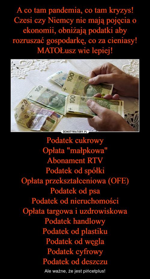 """A co tam pandemia, co tam kryzys! Czesi czy Niemcy nie mają pojęcia o ekonomii, obniżają podatki aby rozruszać gospodarkę, co za cieniasy! MATOŁusz wie lepiej! Podatek cukrowy Opłata """"małpkowa"""" Abonament RTV Podatek od spółki Opłata przekształceniowa (OFE) Podatek od psa Podatek od nieruchomości Opłata targowa i uzdrowiskowa Podatek handlowy Podatek od plastiku Podatek od węgla Podatek cyfrowy Podatek od deszczu"""