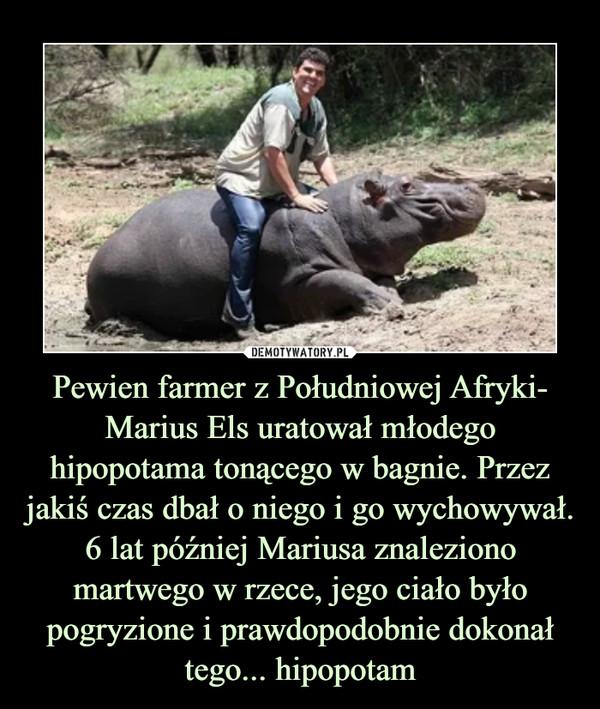 Pewien farmer z Południowej Afryki- Marius Els uratował młodego hipopotama tonącego w bagnie. Przez jakiś czas dbał o niego i go wychowywał. 6 lat później Mariusa znaleziono martwego w rzece, jego ciało było pogryzione i prawdopodobnie dokonał tego... hipopotam