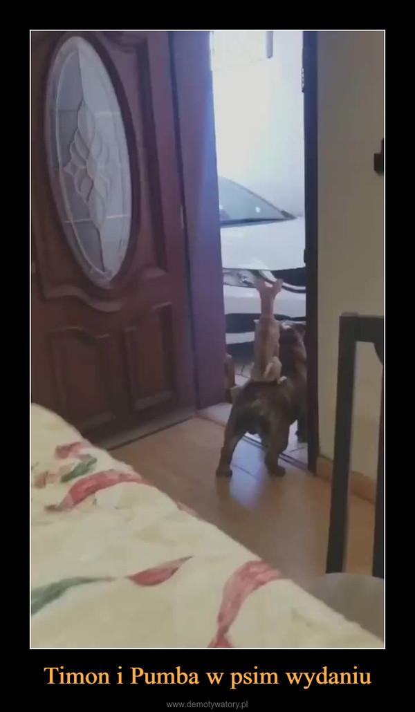 Timon i Pumba w psim wydaniu –
