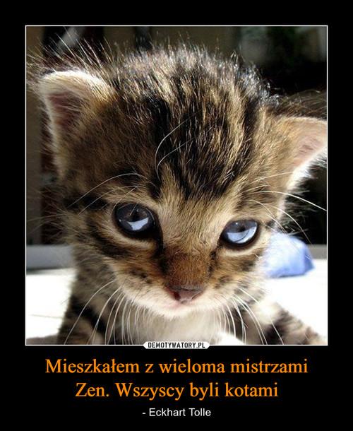 Mieszkałem z wieloma mistrzami Zen. Wszyscy byli kotami
