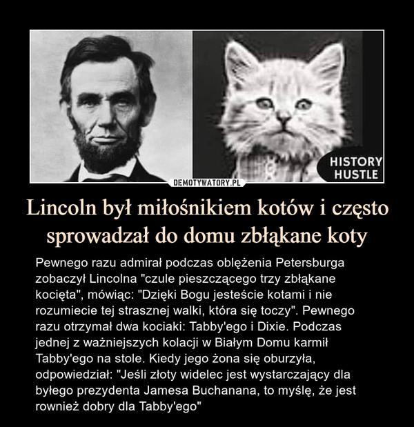 """Lincoln był miłośnikiem kotów i często sprowadzał do domu zbłąkane koty – Pewnego razu admirał podczas oblężenia Petersburga zobaczył Lincolna """"czule pieszczącego trzy zbłąkane kocięta"""", mówiąc: """"Dzięki Bogu jesteście kotami i nie rozumiecie tej strasznej walki, która się toczy"""". Pewnego razu otrzymał dwa kociaki: Tabby'ego i Dixie. Podczas jednej z ważniejszych kolacji w Białym Domu karmił Tabby'ego na stole. Kiedy jego żona się oburzyła, odpowiedział: """"Jeśli złoty widelec jest wystarczający dla byłego prezydenta Jamesa Buchanana, to myślę, że jest rownież dobry dla Tabby'ego"""""""