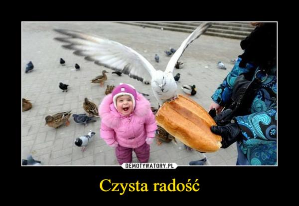 Czysta radość –