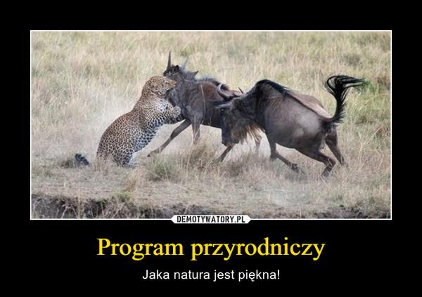 Program przyrodniczy – Jaka natura jest piękna!