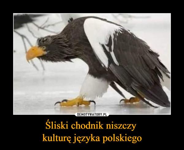 Śliski chodnik niszczy kulturę języka polskiego –