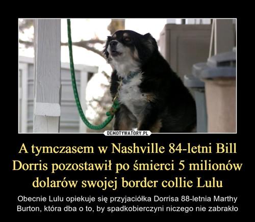 A tymczasem w Nashville 84-letni Bill Dorris pozostawił po śmierci 5 milionów dolarów swojej border collie Lulu