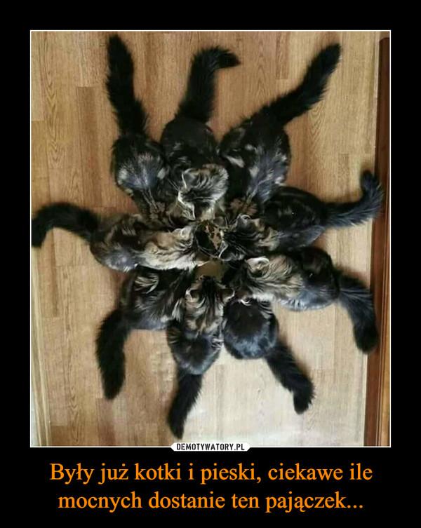 Były już kotki i pieski, ciekawe ile mocnych dostanie ten pajączek... –