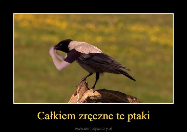Całkiem zręczne te ptaki –
