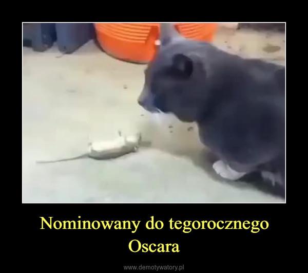 Nominowany do tegorocznego Oscara –