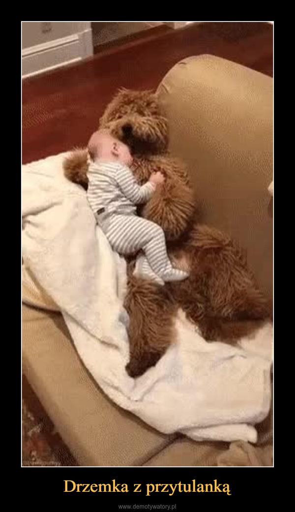 Drzemka z przytulanką –