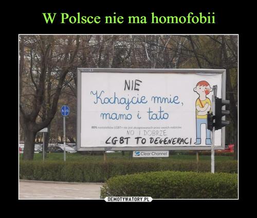 W Polsce nie ma homofobii