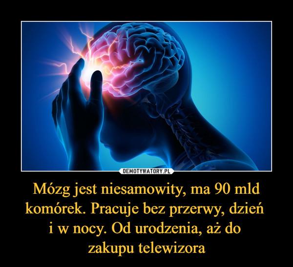 Mózg jest niesamowity, ma 90 mld komórek. Pracuje bez przerwy, dzień i w nocy. Od urodzenia, aż do zakupu telewizora –