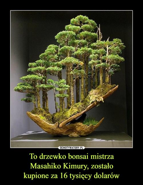 To drzewko bonsai mistrza Masahiko Kimury, zostało kupione za 16 tysięcy dolarów