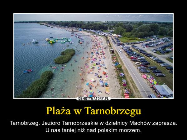Plaża w Tarnobrzegu – Tarnobrzeg. Jezioro Tarnobrzeskie w dzielnicy Machów zaprasza. U nas taniej niż nad polskim morzem.