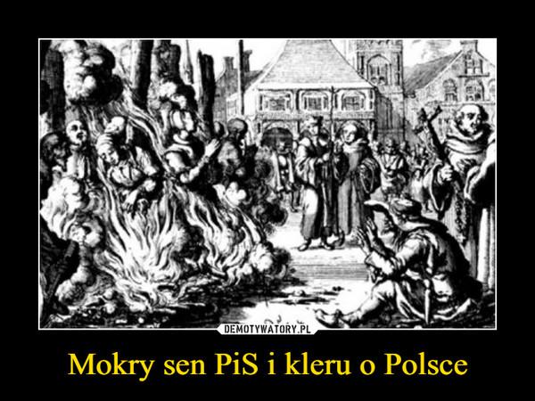 Mokry sen PiS i kleru o Polsce –