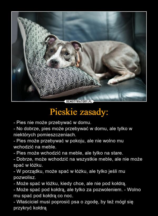 Pieskie zasady: – - Pies nie może przebywać w domu. - No dobrze, pies może przebywać w domu, ale tylko w niektórych pomieszczeniach. - Pies może przebywać w pokoju, ale nie wolno mu wchodzić na meble. - Pies może wchodzić na meble, ale tylko na stare. - Dobrze, może wchodzić na wszystkie meble, ale nie może spać w łóżku.  - W porządku, może spać w łóżku, ale tylko jeśli mu pozwolisz. - Może spać w łóżku, kiedy chce, ale nie pod kołdrą. - Może spać pod kołdrą, ale tylko za pozwoleniem. - Wolno mu spać pod kołdrą co noc. - Właściciel musi poprosić psa o zgodę, by też mógł się przykryć kołdrą