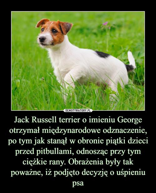 Jack Russell terrier o imieniu George otrzymał międzynarodowe odznaczenie, po tym jak stanął w obronie piątki dzieci przed pitbullami, odnosząc przy tym ciężkie rany. Obrażenia były tak poważne, iż podjęto decyzję o uśpieniu psa