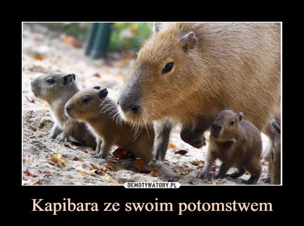 Kapibara ze swoim potomstwem –