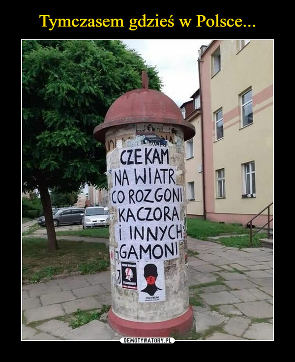 Tymczasem gdzieś w Polsce...