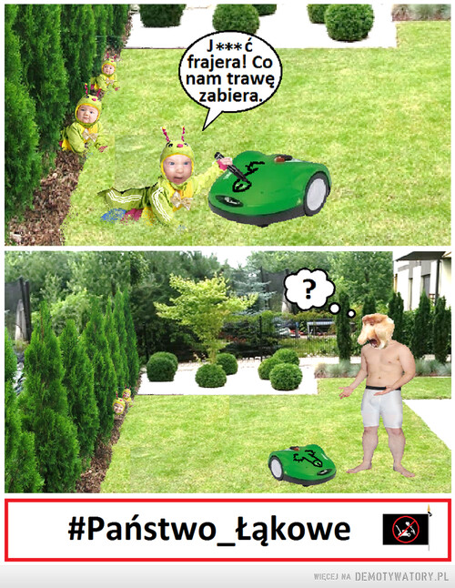 Nie zabieraj trawy gąsieniczkom!