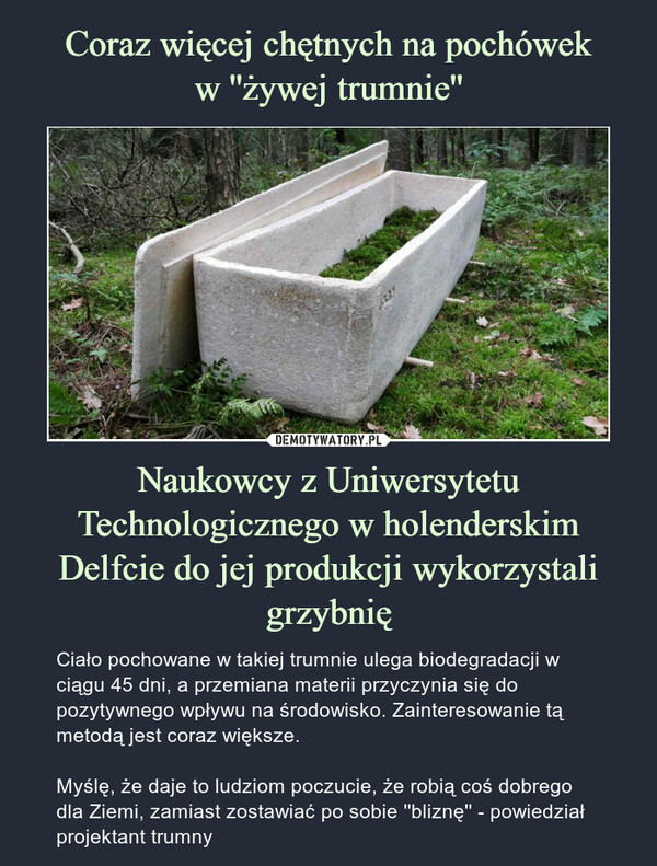 Naukowcy z Uniwersytetu Technologicznego w holenderskim Delfcie do jej produkcji wykorzystali grzybnię – Ciało pochowane w takiej trumnie ulega biodegradacji w ciągu 45 dni, a przemiana materii przyczynia się do pozytywnego wpływu na środowisko. Zainteresowanie tą metodą jest coraz większe.Myślę, że daje to ludziom poczucie, że robią coś dobrego dla Ziemi, zamiast zostawiać po sobie ''bliznę'' - powiedział projektant trumny
