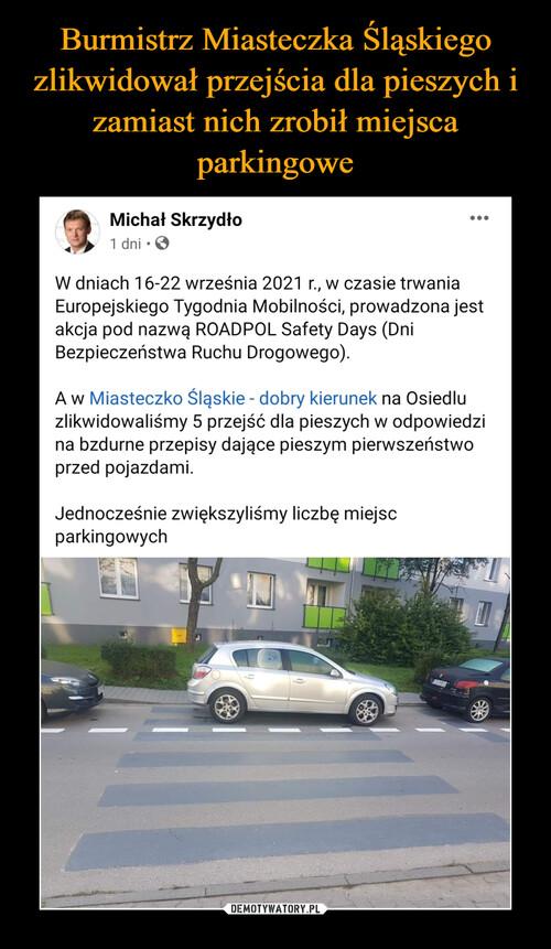 Burmistrz Miasteczka Śląskiego zlikwidował przejścia dla pieszych i zamiast nich zrobił miejsca parkingowe